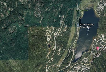 Access to WSA - Alta Lake Road construction
